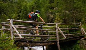 Mountainbike Harz