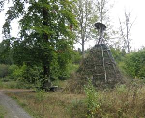 Schutzhütte im Harz
