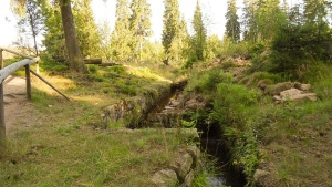 Wandern im Harz am Oderteich